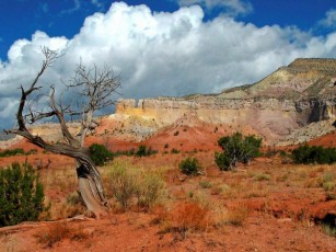 New Mexico Ghost Ranch area 2